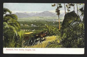 Redlands High View From Smiley Heights CA Unused c1910s