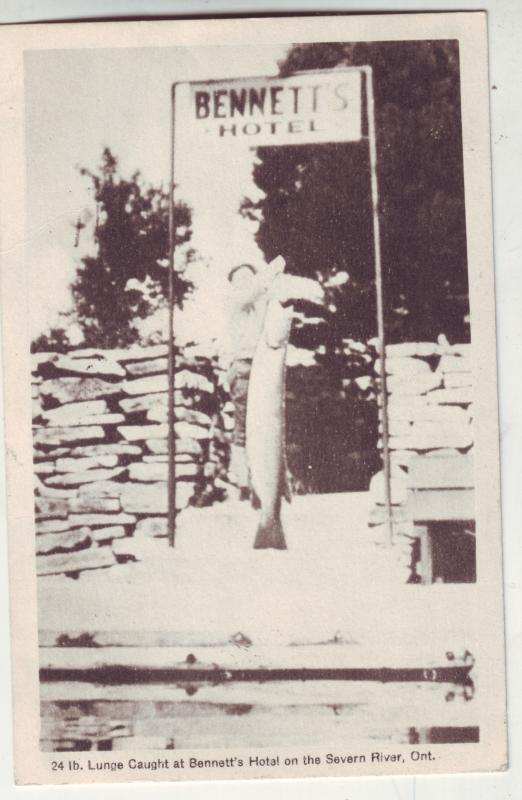 P849 1949 24lb.lunge caught bennett,s hotel severn river ontario canada