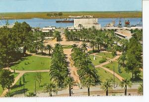 Postal 030785 : huelva. Muelle y Jardines