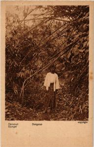 CPA BANGELAN Oerwoud Djungel INDONESIA (565933)