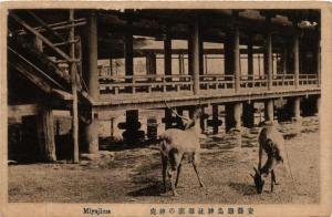 CPA Miyajima JAPAN (725193)