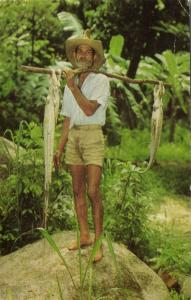 seychelles, Native Fisherman with his Catch (1970s) Stamp