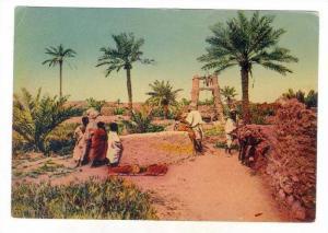 L´Afrique   Un puits au M'zab, 30-40s