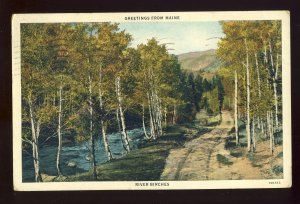 Maine/ME Postcard, Greetings From Maine, River Birches, 1934!