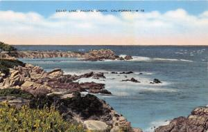 PACIFIC GROVE CALIFORNIA COAST LINE~HOME OF THE BUTTERFLIES~C S BENDER POSTCARD