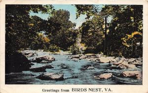 C55/ Birds Nest Virginia Va Postcard 1924 Greetings from Birds Nest