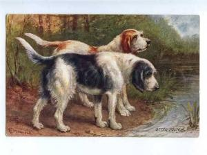183017 Hunting dogs Otter Hound by Drummond Vintage TUCK