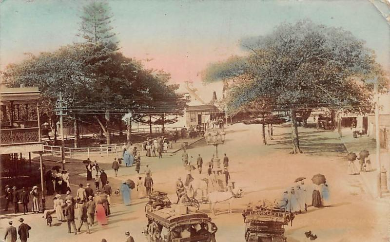 Australia? Brisbane Animated (Rock Lily 1) Horses Carriages 1907