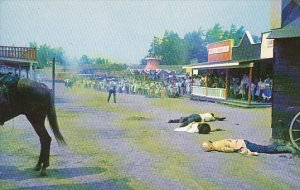 New York Alexandria Bay Adventure Town Bank Robbery Attempt