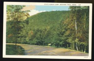 Mohawk Trail, Mass/MA Postcard, State Forest Camp