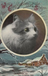 CHRISTMAS, 1900-10s; Profile of Cat, Winter Scene, Poem (3)