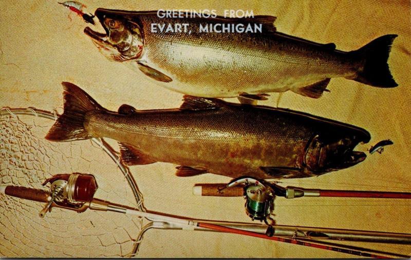 Michigan Greetings From Evart Silver Salmon Fishing Catch