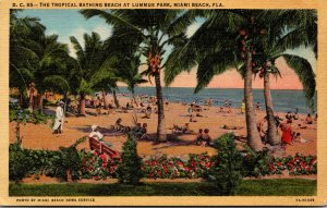 Florida Miami Beach The Tropical Bathing Beach At Lummus Park Curteich