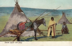 Sarcee squaw and pony, 1901-07