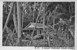 Singapore China A Malay Dwelling House RPPC Postcard