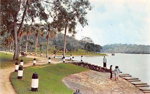 Singapore McRitchie Reservoir  McRitchie Reservoir