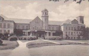 Michigan Mt Pleasant Main Building Central State Normal School Albertype