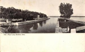 Keokuk Iowa~Tree on Triangle at First Lock~Postcard c1907