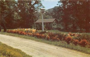 Connersville Indiana~Mary Gray Bird Sanctuary~Birdhouse~Pavilion~Flowers~'50s Pc