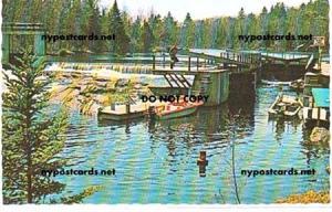 Lower Locks, Saranac Lake NY