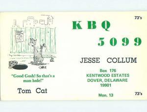 cat - QSL CB HAM RADIO CARD Dover Delaware DE t8710