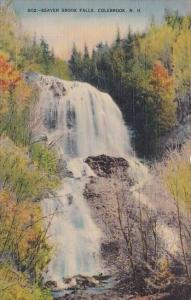 Beaver Brook Falls Colebrook New Hampshire 1940