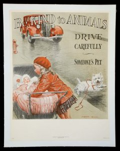 Be Kind to Animals- Drive Carefully- Someone's Pet