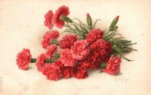 ?Vintage Postcard 1915 Victorian Carnation  Beautiful Flowers Grayson County Art