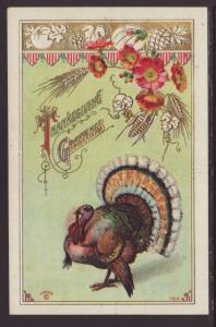 Thanksgiving Greetings,Turkey,Flowers Postcard