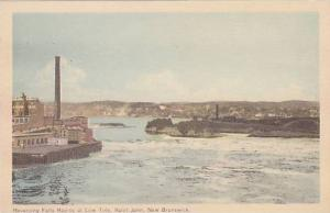 Reversing Falls Rapids at Low Tide, Saint John,  N.B., Canada, 00-10s