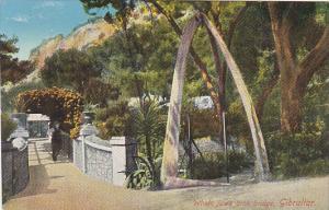 Whale Jaws Arch Bridge Gibraltar