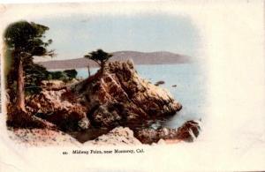Midway Point, Near Monterey California, Antique Undivided Back Postcard G01