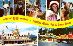 New York Lake Placid & Ausable Chasm Sterling-Alaska Fur & Game Farm