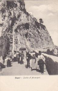 CAPRI , Italy , 00-10s;  Salita d'Anacapri, Donkey