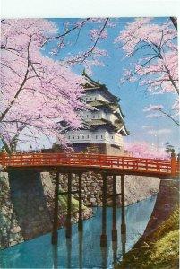 Hirosaki Castle Cherry Spring Japan