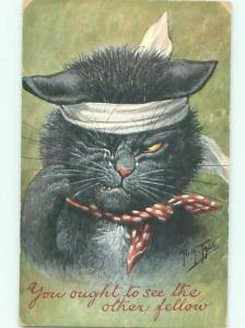 Pre-Linen signed CAT WITH HEAD INJURY AC5436