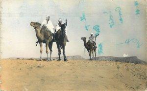 African scenes et types postcard chameliers dans le desert