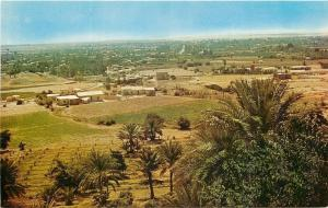 Jericho Israel~Hilltop View of Village~1970s Postcard