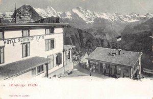 SWITZERLAND ~ SCHYNIGE PLATTE ~HOTEL-ALPS-1900s POSTCARD