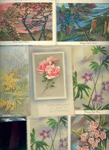 pc6791 postcard Flowers Plants SEVEN 1 used 6 not