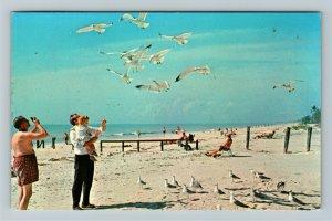 Bonita Springs FL- Florida, The Beach, Chrome Postcard