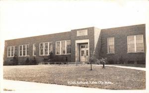 Lake City Michigan~New Art Deco High School~Young Trees~RPPC 1940s