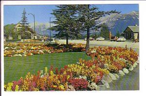 Village Gardens, Jasper Park, Alberta,