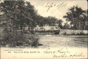 Bushkill PA Bridge Rotograph 5874 c1905 Postcard
