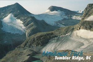 Canada British Columbia Tumbler Ridge Monkman Park