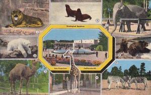 California San Francisco Zoological Gardens