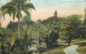 Australia Queensland Brisbane botanical garden early postcard