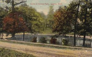Michigan Jackson Scene In Loomis Park