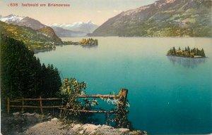 Europe Switzerland Postcard Iseltwald