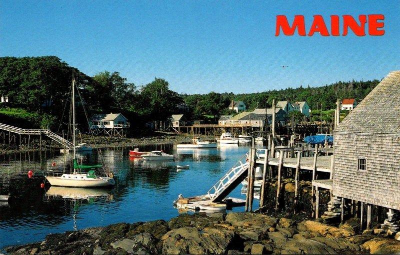 Maine Quiet Harbor Scene